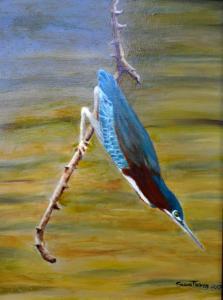 Greenback Heron